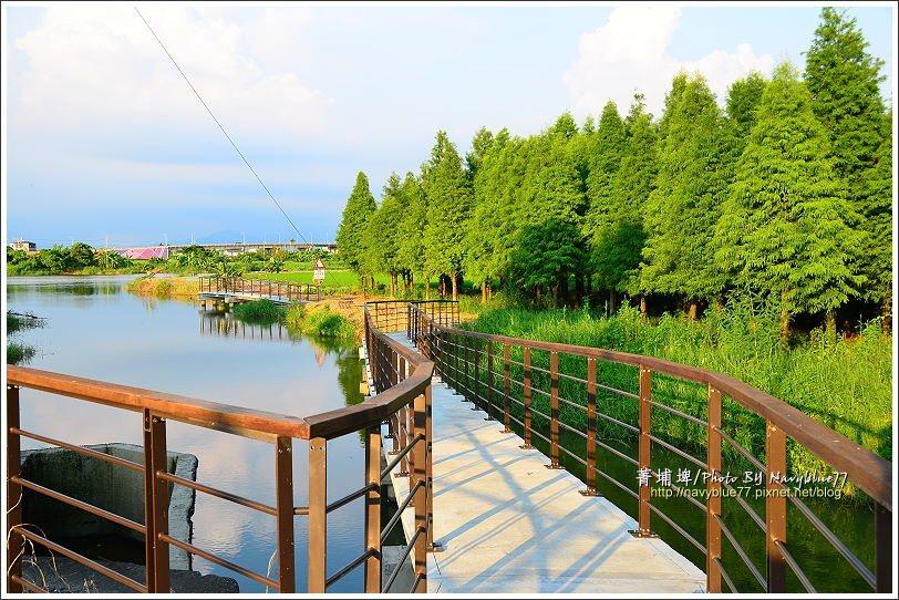 ↑菁埔埤的入口,由台1省道上幾乎看不出內有埤塘,但一站上這個入口就覺得這個小埤塘...
