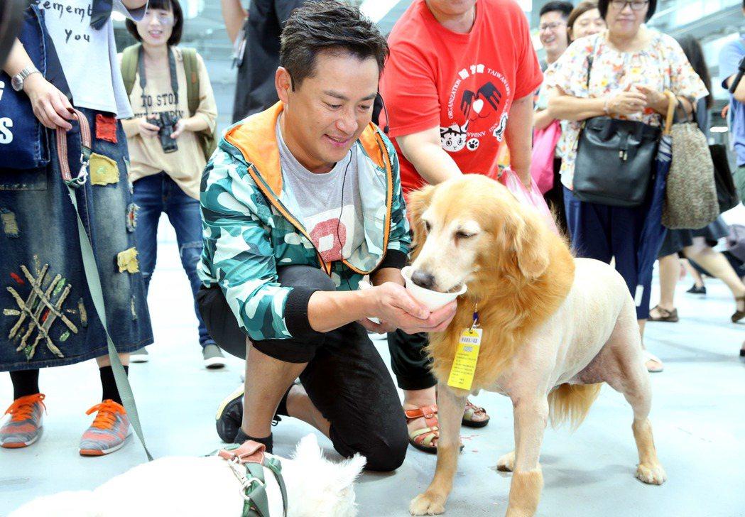 藝人江宏恩今天在台北寵物生活用品展為新書站台,示範寵物料理,與狗狗互動。記者林俊...
