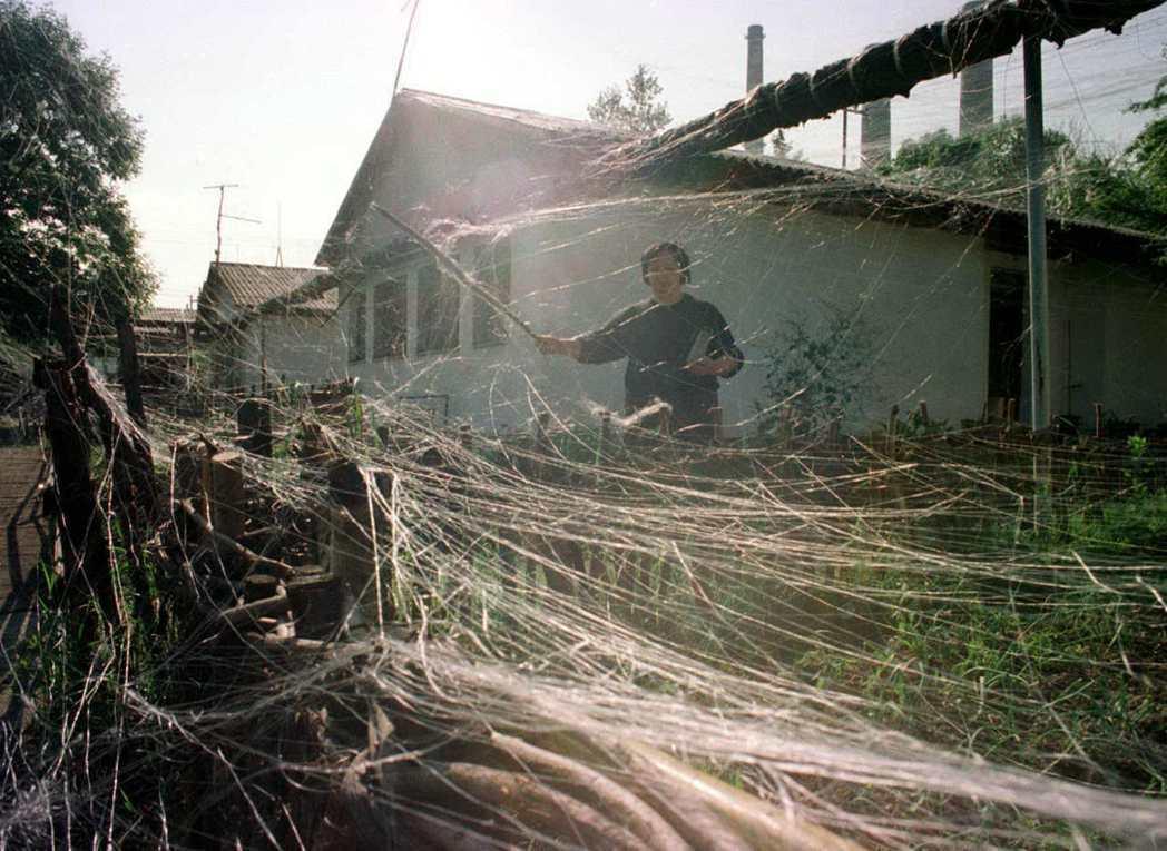 北約1999年5月對塞爾維亞投擲石墨炸彈,空襲後當地居民清理住處附近的導電纖維。...