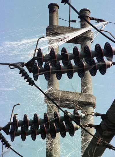 北約1999年5月對塞爾維亞投擲石墨炸彈,貝爾格勒的供電線路被導電纖維纏住而短路...