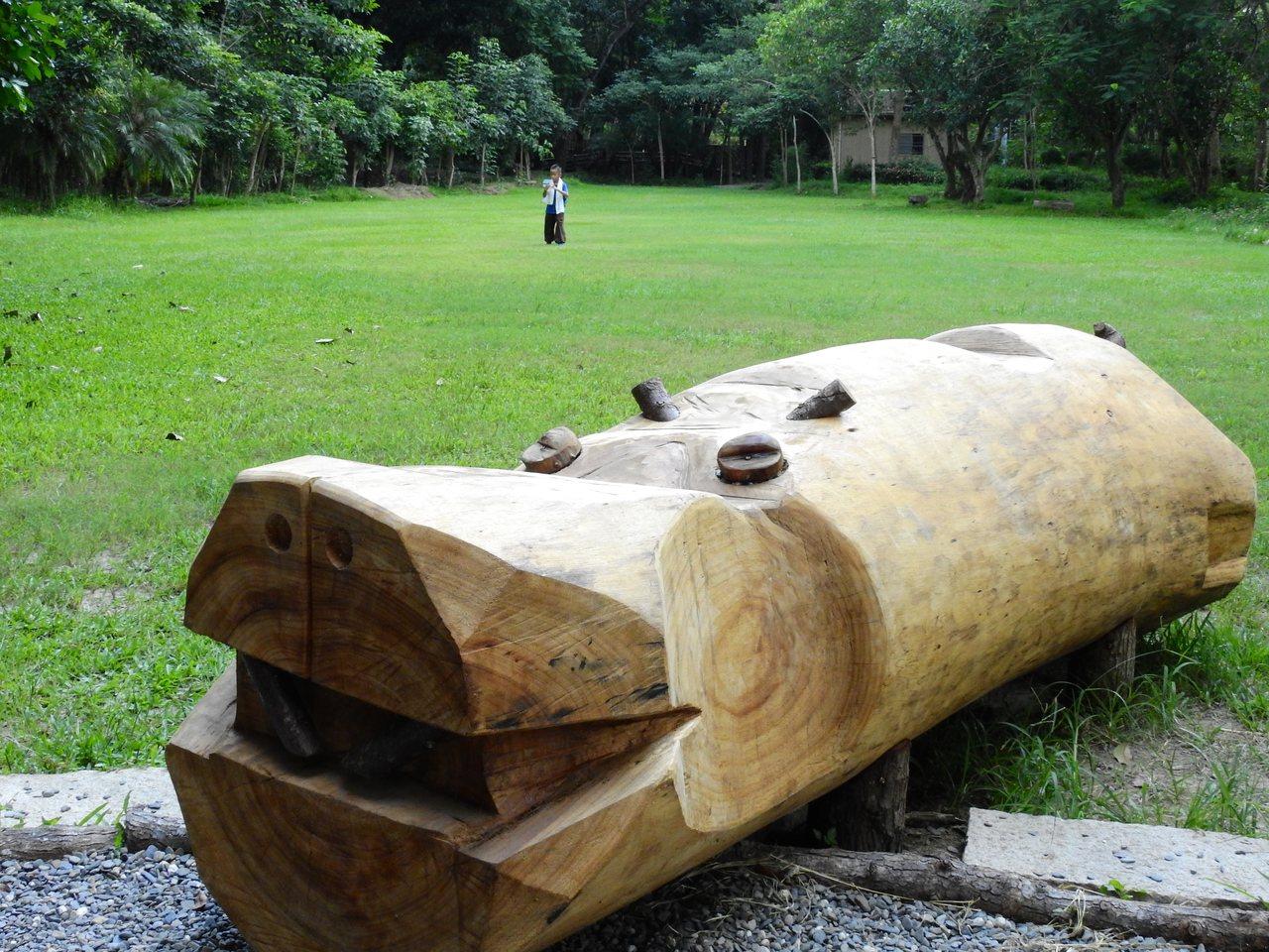 新化林場原木大河馬是麻六甲合歡。 記者吳淑玲/攝影
