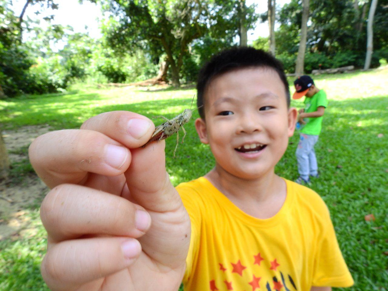 新化林場生態豐富,小朋友進行生態觀察課程。 記者吳淑玲/攝影