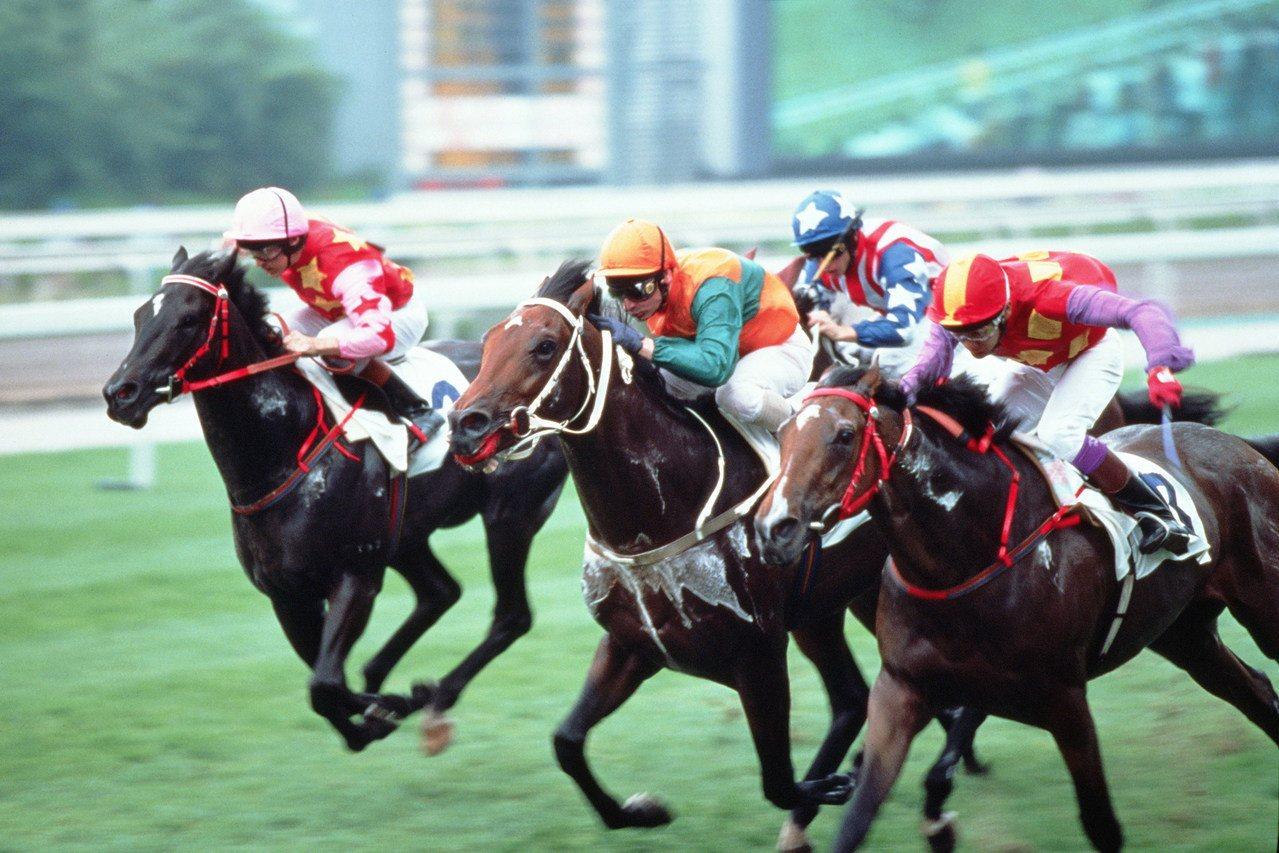 賽馬是香港特有文化體驗,滿20人團體可享有主題夜晚嘉年華,免費到馬場喝啤酒大吃美...