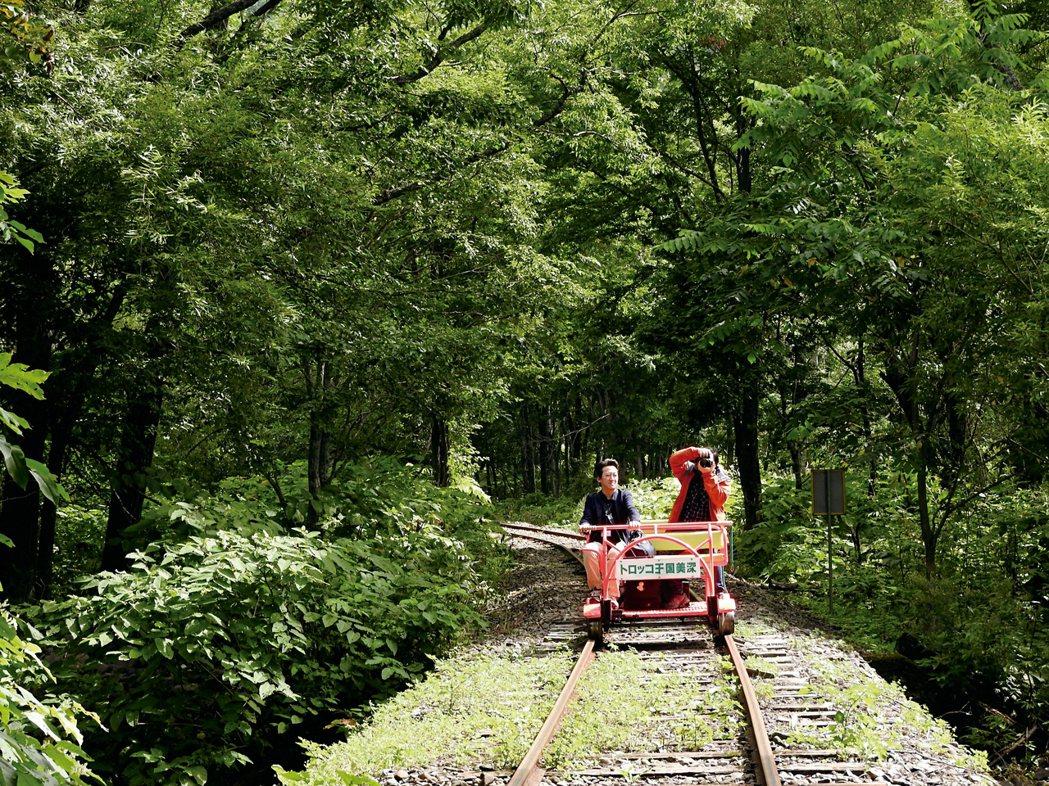 鐵道兩側都是楓樹林,秋末前往可看到楓樹由綠轉黃、紅的美景。 圖/記者魏妤庭