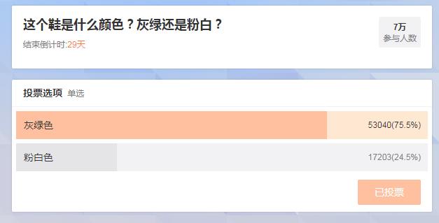 「灰綠還是粉白?」大陸網友「myOffer學無國界」昨天下午在微博上貼出球鞋圖片...