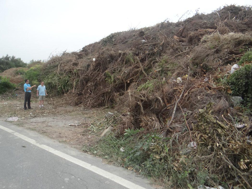 水林鄉海埔村一處約半公頃的農地堆滿廢木,宛若一座枯木山,村民擔心一旦發生火災,後...