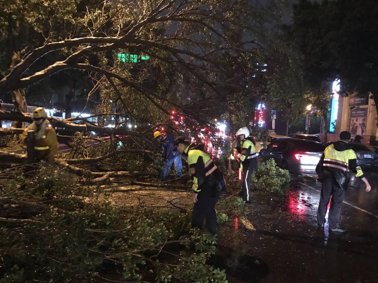 北市承德路四段兩路樹倒塌,影響三線車道。圖╱北市交通警察大隊提供
