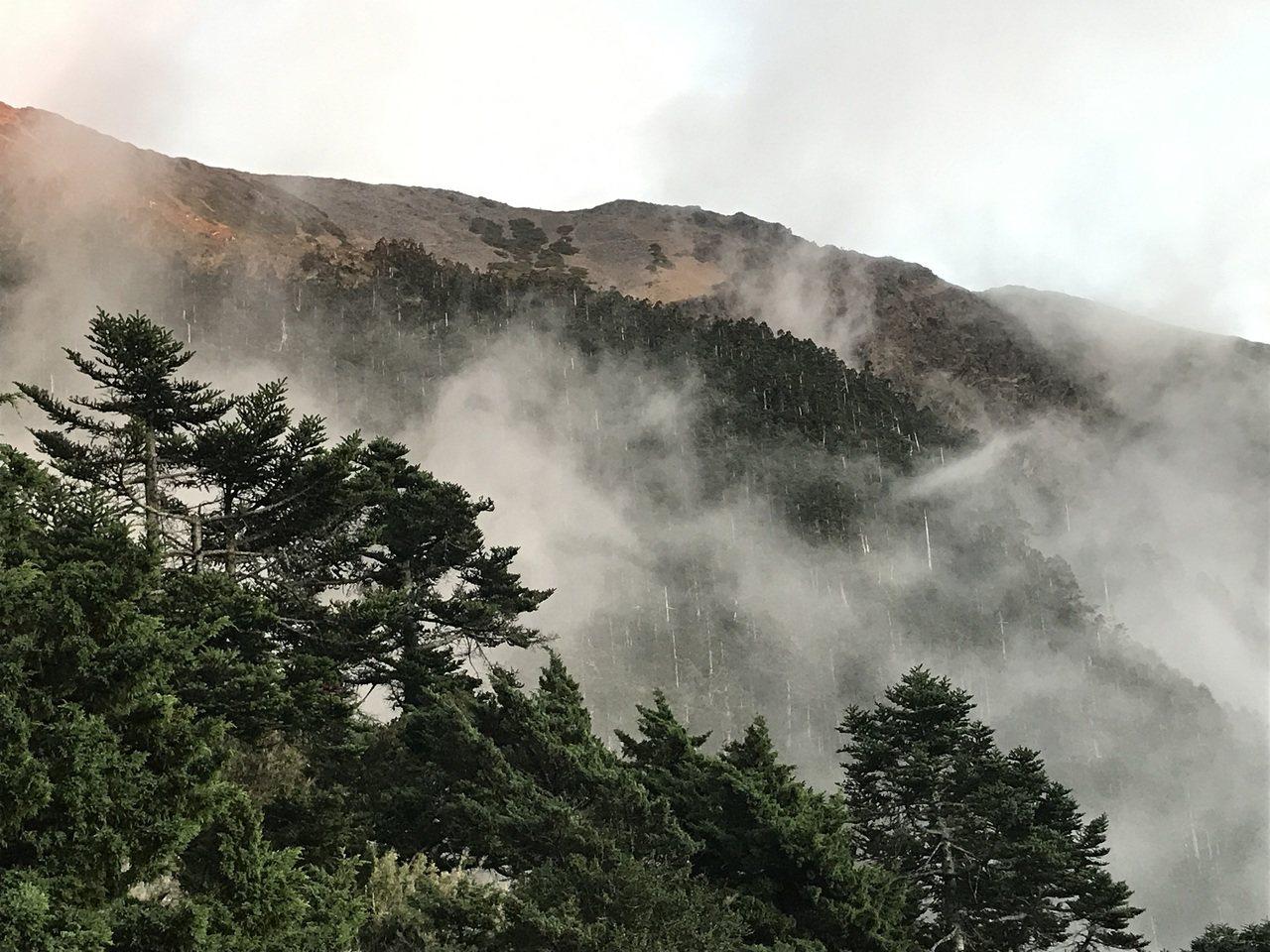 雲讓高山輕盈,高山讓雲沉重。 攝影/林力敏