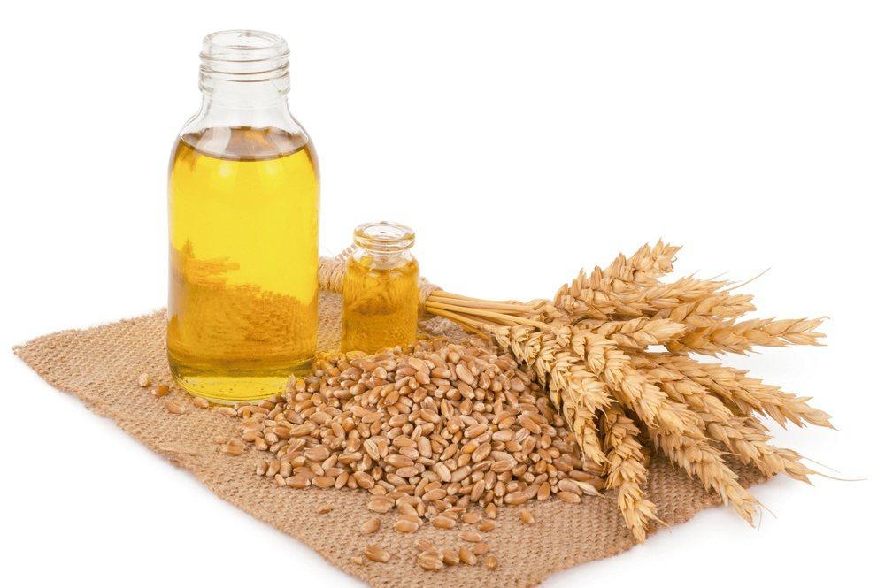 小麥胚芽油 圖/元氣周報