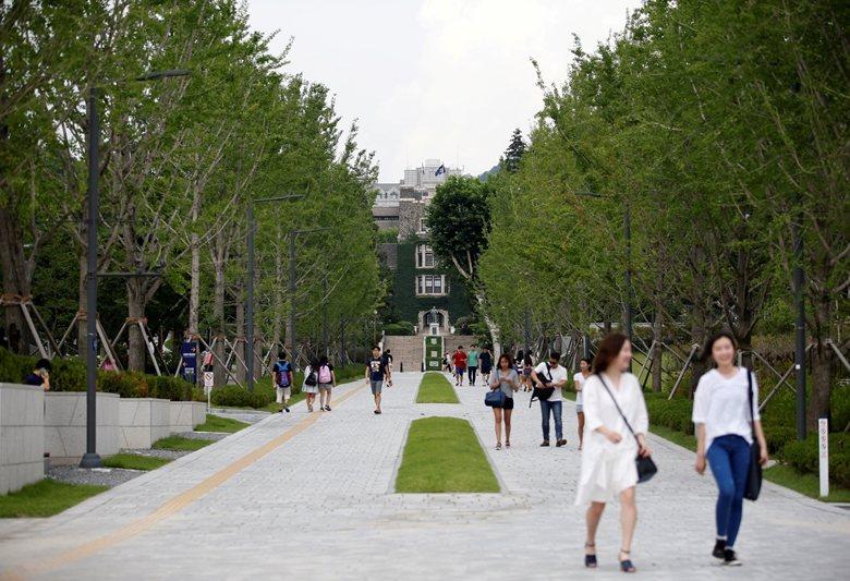 延世路的校內段也與校外段一樣,曾經歷從柏油路變為鋪磚道的改造。 圖/路透社