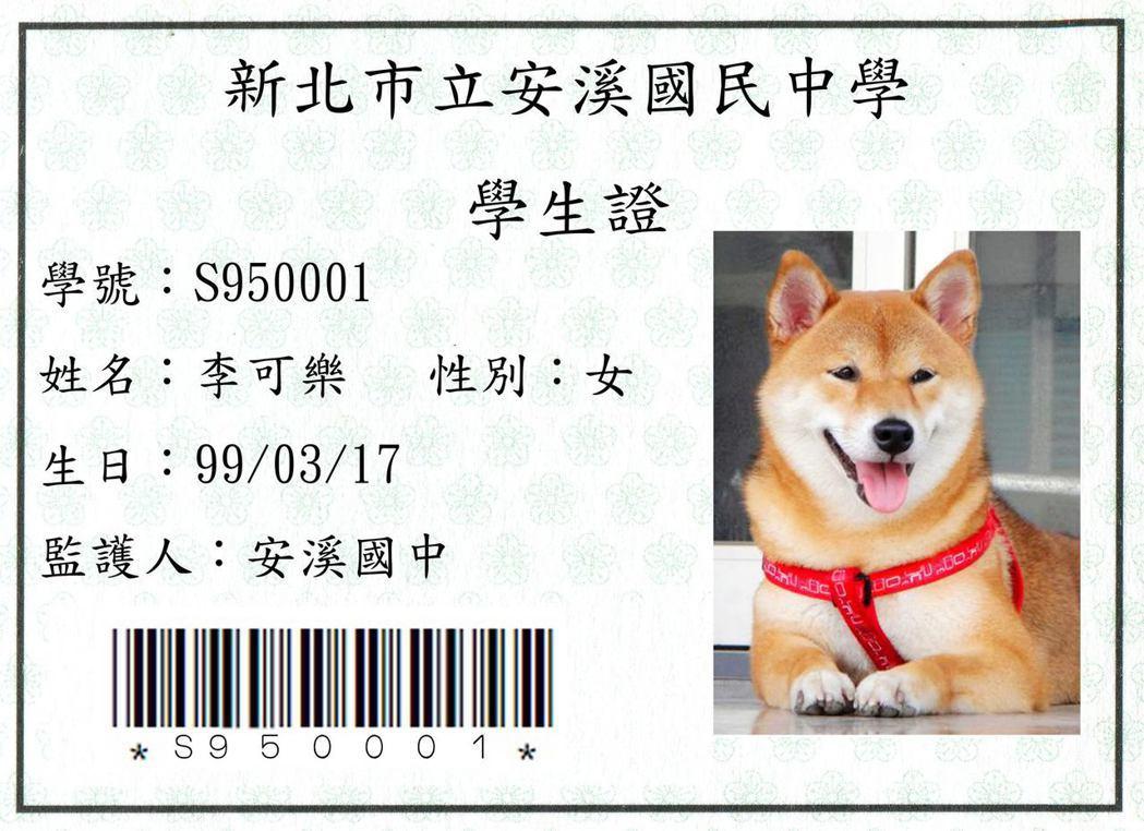 新北市三峽安溪國中校犬「可樂」超受歡迎,校方還頒「學生證」給牠。 圖/安溪國中提...