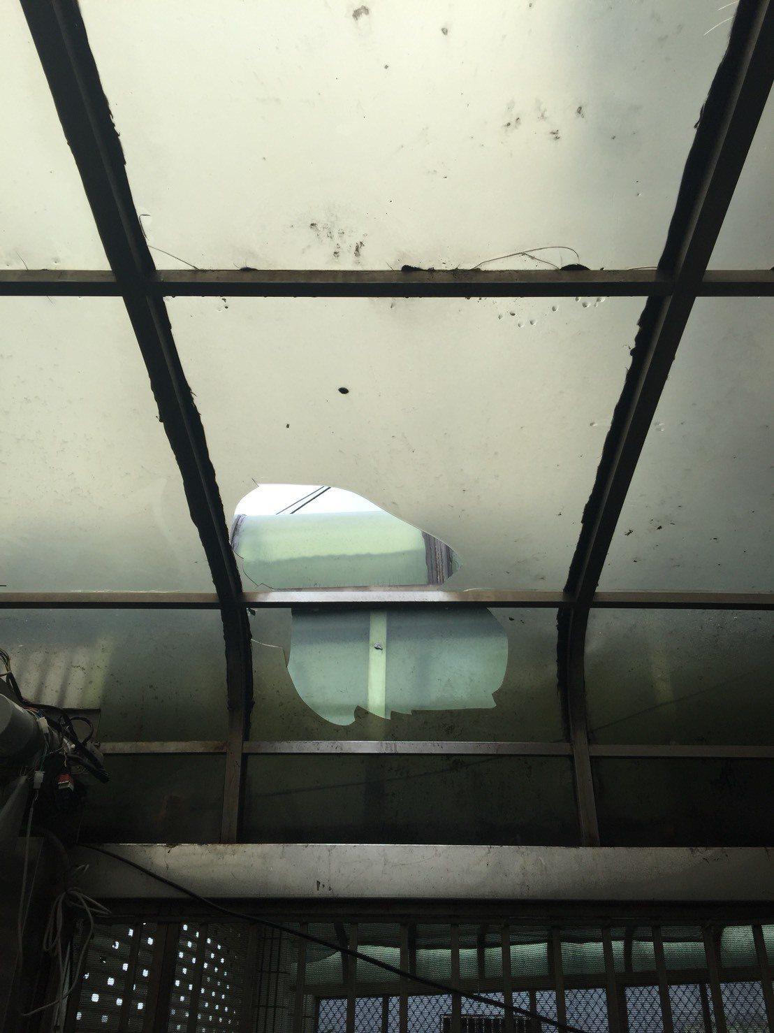 四海幫新生代劉姓男子平時聚眾砍殺被害人為禍地方,警方逮捕時他企圖逃跑,摔破遮雨棚...