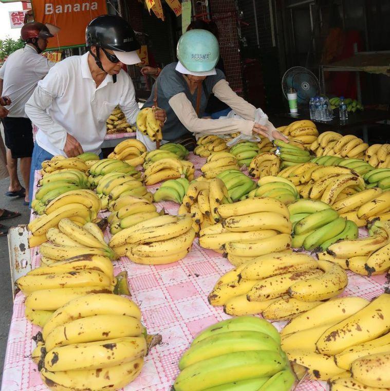 近期蕉價大跌,政府呼籲民眾多多選購,支持國產水果也照顧農民。圖/報系資料庫