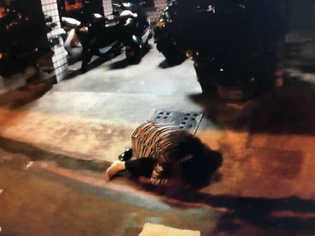 高雄市一名女子酒醉路倒街頭,警方將她送醫,保障人身安全。記者黃宣翰/翻攝