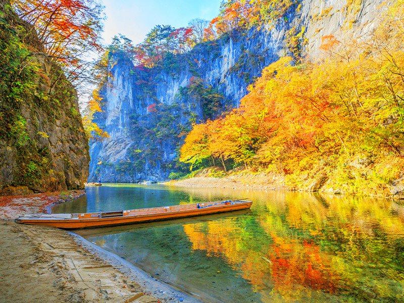 日本東北楓景別具特色,11月出發可搶搭最後賞楓列車。圖/易遊網提供