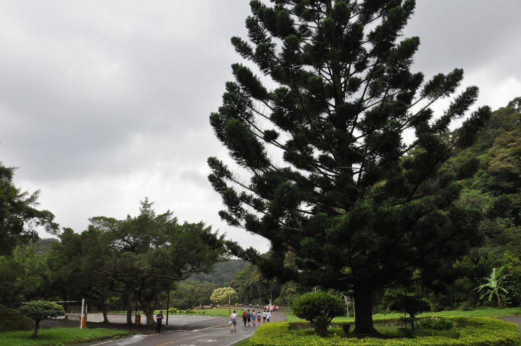 桃園煉油廠坐落林口台地邊緣,三面環山,擁有原始森林生態資源,沿山處規畫長約10公...