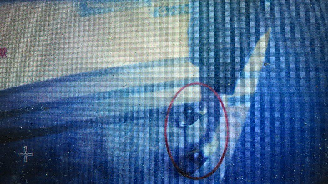 詐騙集團林姓車手頭的喬丹拖鞋太醒目,遭警方鎖定追查。記者范榮達/翻攝