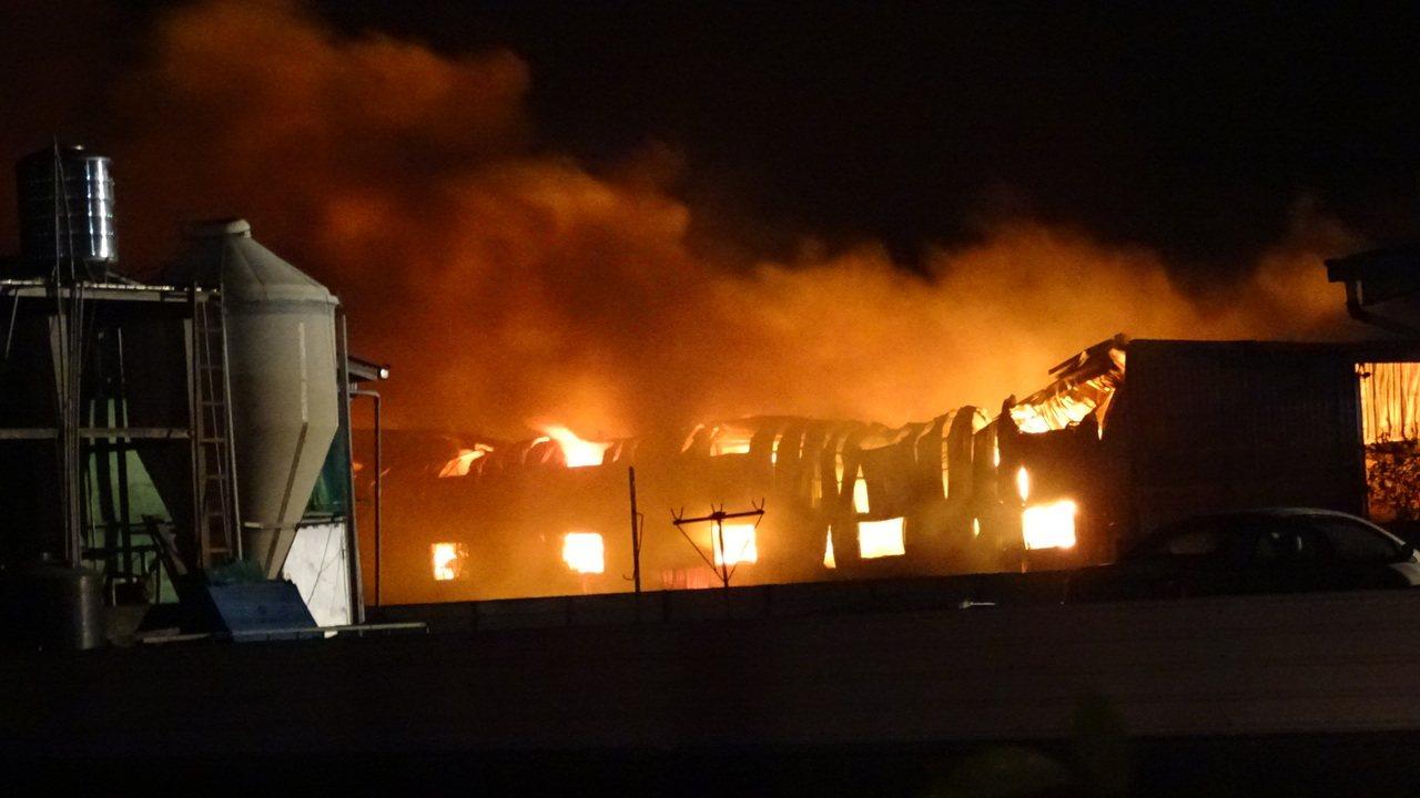 逾千坪倉庫全面燃燒。記者謝進盛/攝影