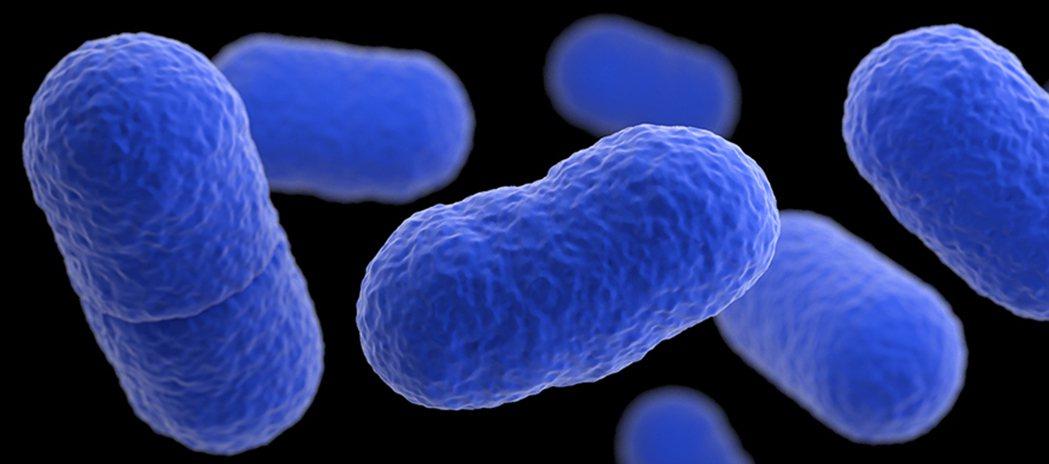 衛生福利部疾病管制署有鑑於李斯特菌症的高嚴重度,且對民眾健康具潛在威脅性,為強化...