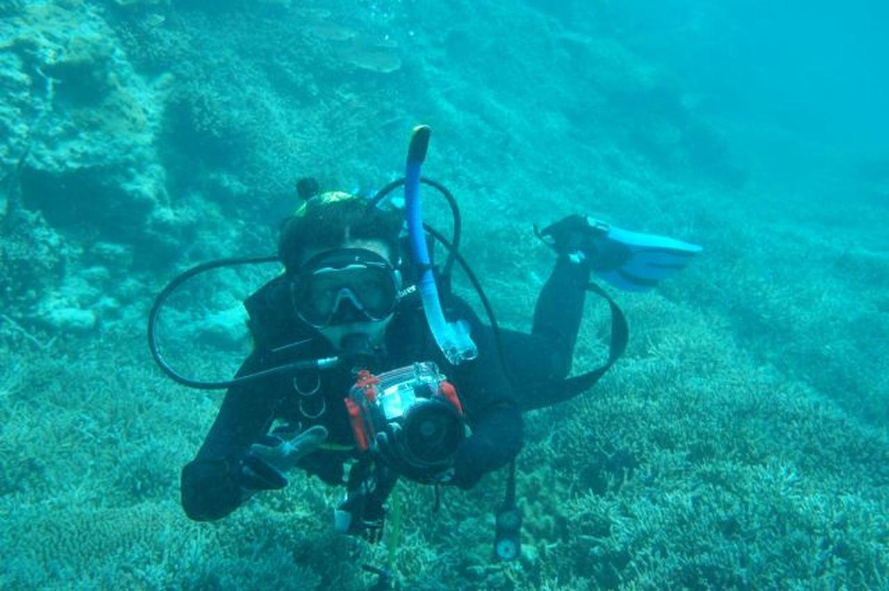 報導指出,與陸地植樹造林相比,海底種珊瑚更加艱難。