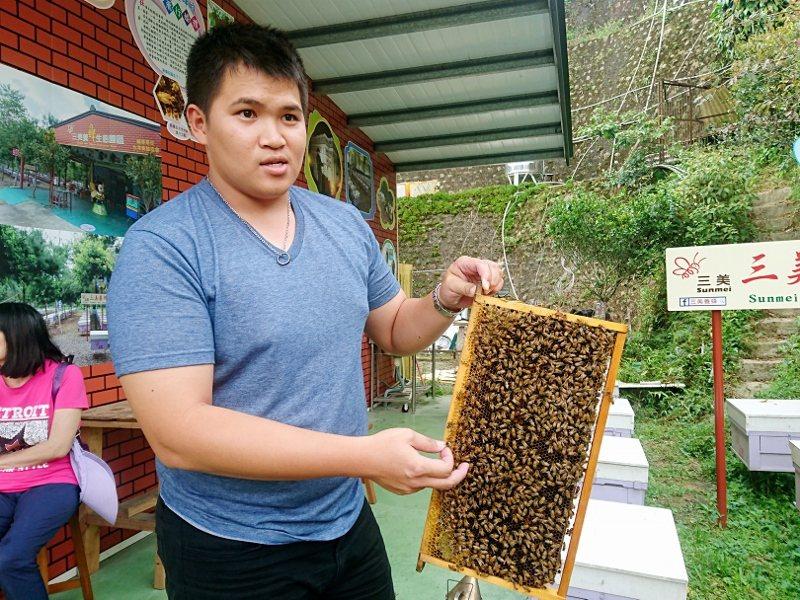 太平老街上的養蜂商家,出產純正蜂蜜。 徐谷楨/攝影