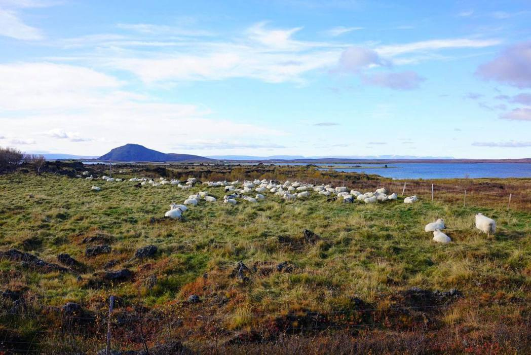 丁文琪PO出冰島度蜜月美照。圖/摘自臉書