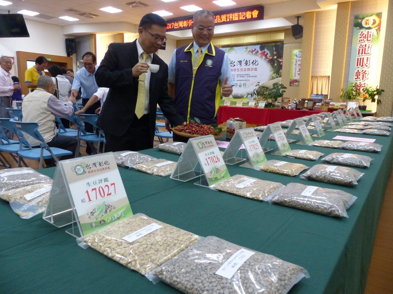 彰化八卦山咖啡今年大豐收,彰化市農會將舉辦評鑑,除提升品質,並打開知名度,圖為彰...