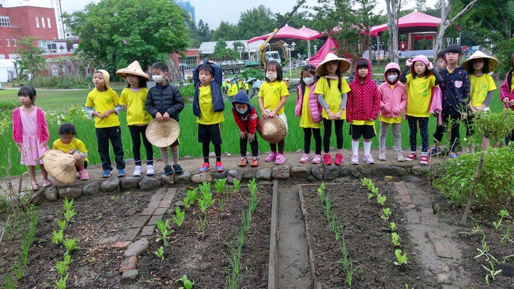 學生走進田園,認識蔬菜如何生長。圖/李孟發提供