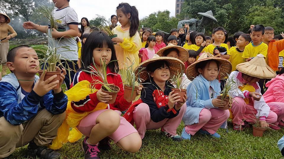 學生頭戴斗笠、進行農作體驗。記者吳佩旻/攝影