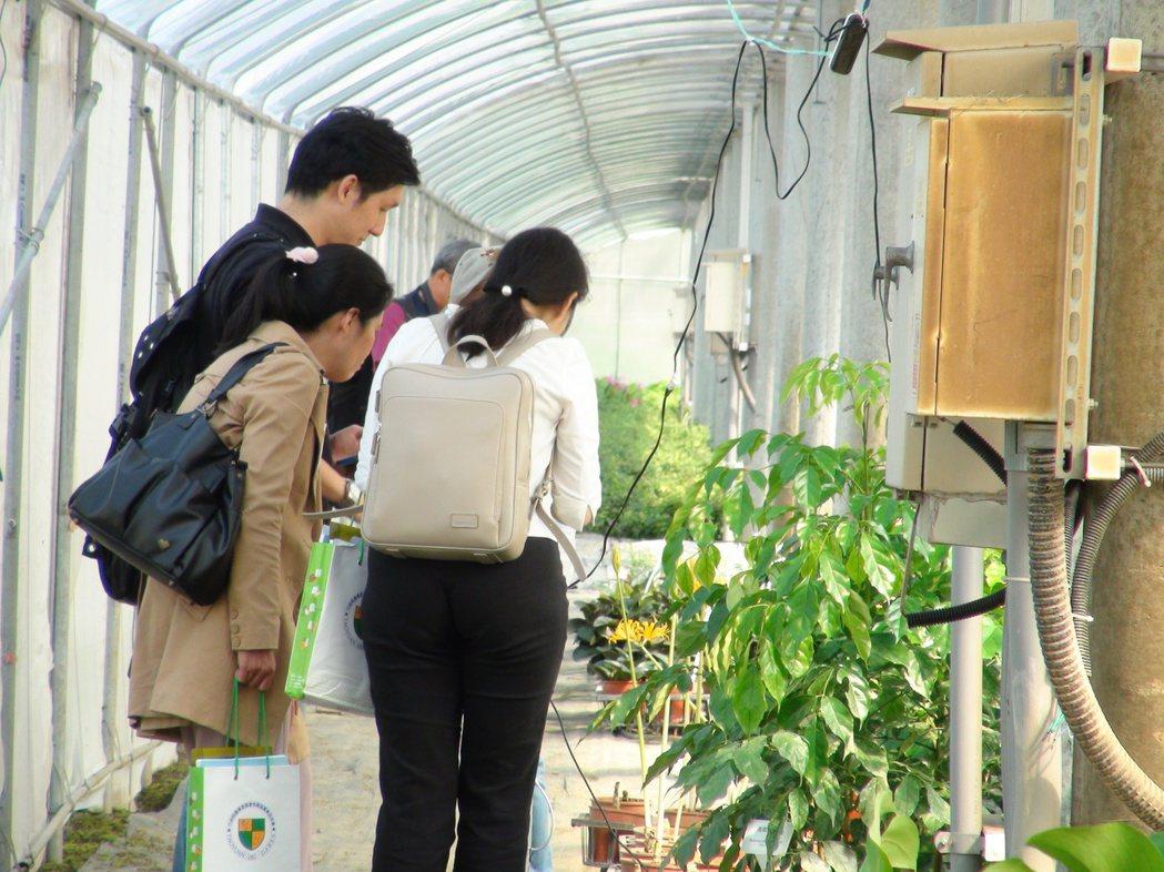農委會桃園區農改場與綠源科技公司合作,在雲林縣虎尾、土庫地區進行太陽光電場域作物...