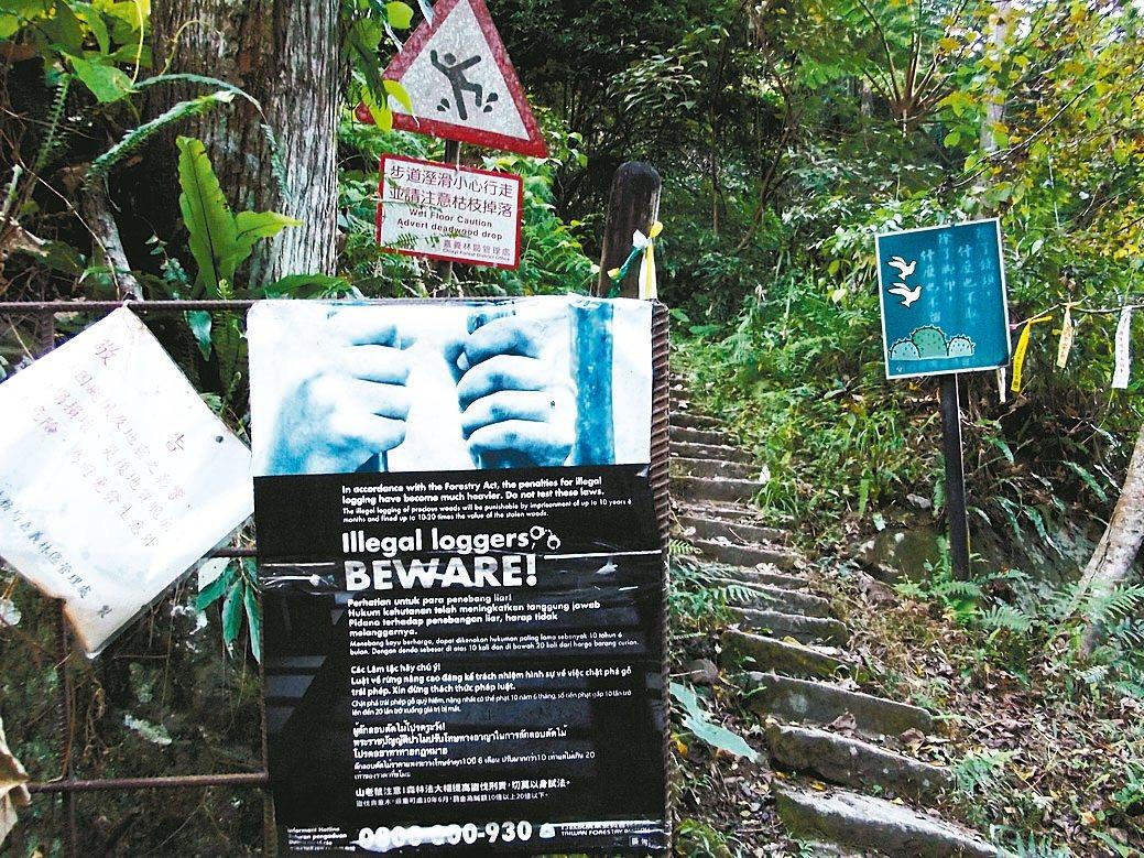 林務局曾在石夢谷封山,卻淪山老鼠盜伐熱區,後來還在封山警示牌旁,加設五種語言的禁...