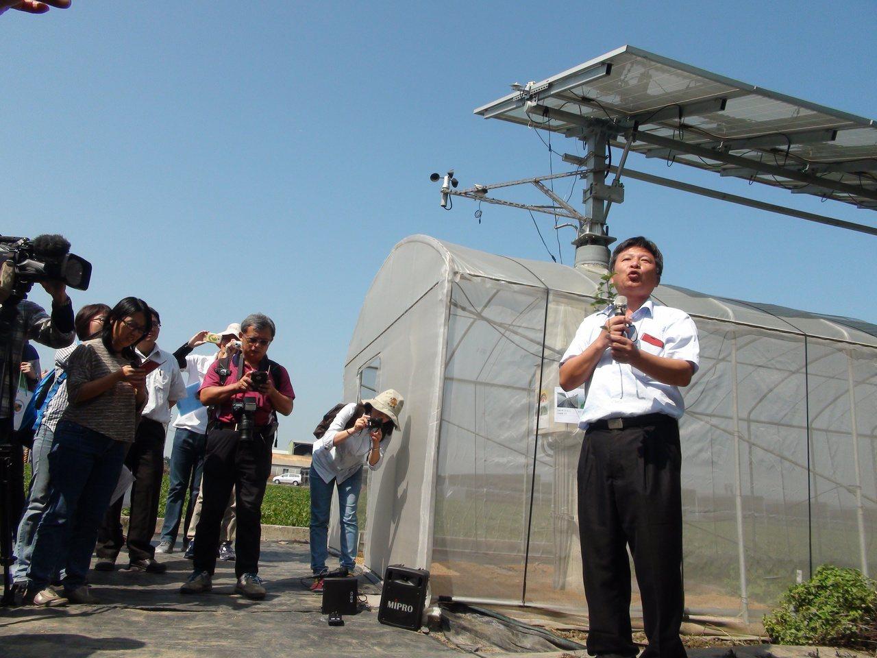 虎尾、土庫地區進行太陽光電場域作物栽培試驗,種出無花果、仙草、香莢蘭等10多項作...