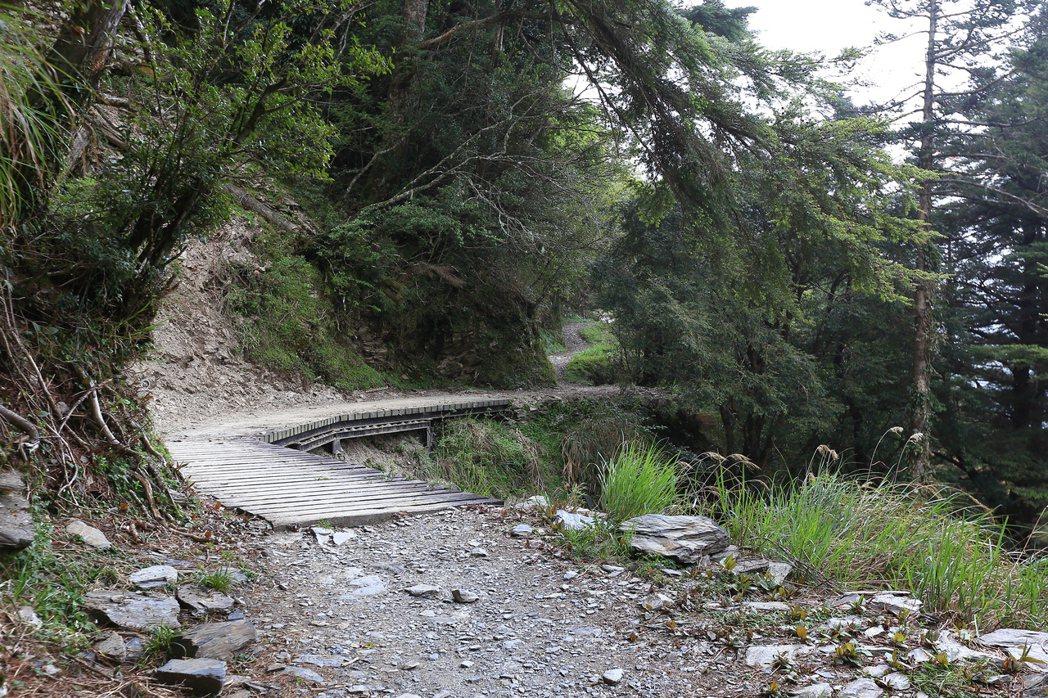 能高越嶺古道路況之好,是可以騎機車的路。 圖/作者自攝