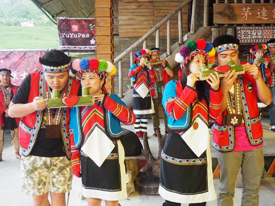 全國海拔最高(2216公尺)的浪漫婚禮-阿里山神木下婚禮,來自海內外14對新人,...