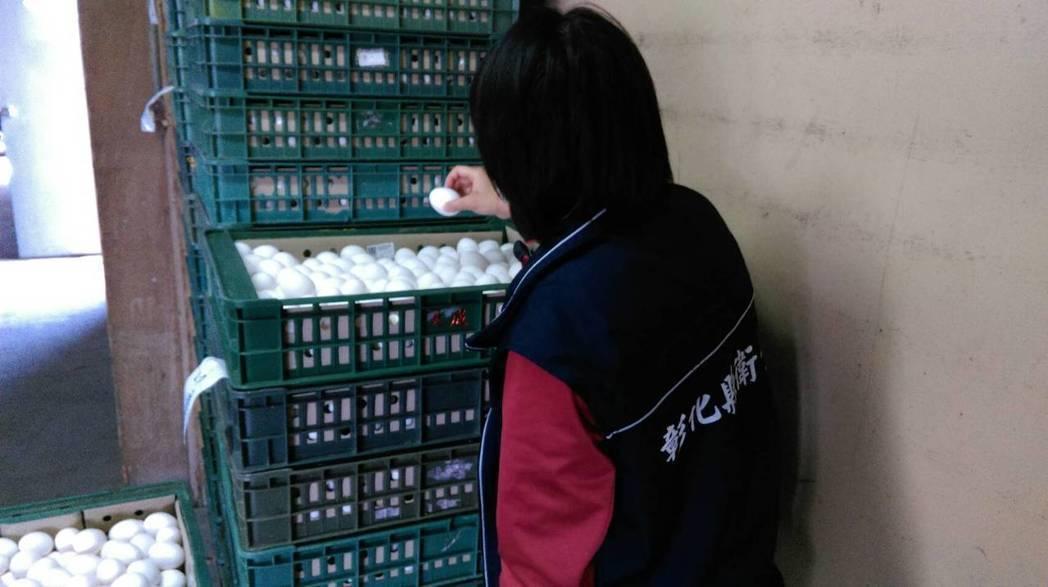 彰化縣衛生局今天清晨稽查產出芬普尼蛋的畜牧場。圖/彰化衛生局提供