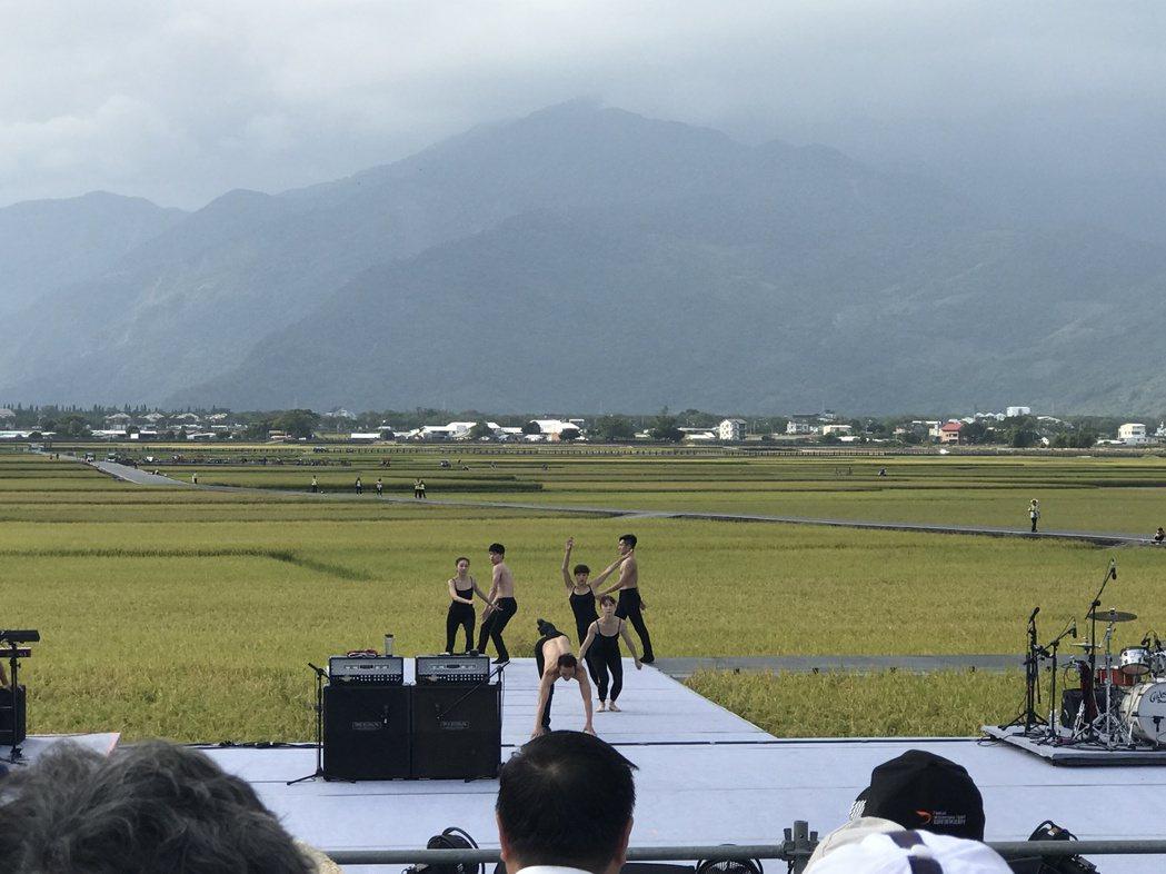 6名舞者在池上稻田中表演現代舞。圖/記者黃保慧攝