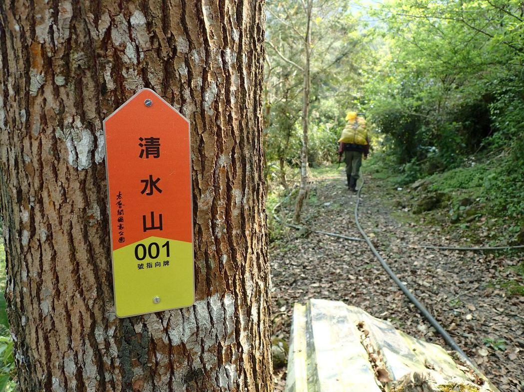 太魯閣清水山步道,今天傍晚傳登出有山客遭虎頭蜂螫咬待援。圖/翻攝太管處網站