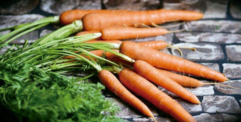 數人知道多食胡蘿蔔對眼睛有利,因胡蘿蔔富含β-胡蘿蔔素,在體內會轉化為維生素A,...