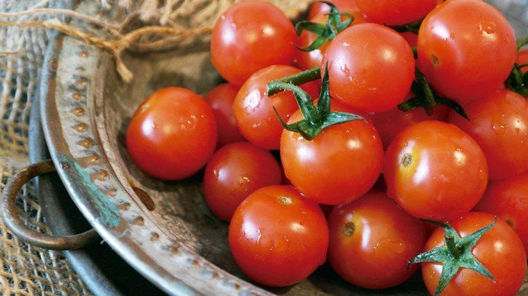 番茄有強大的抗氧化成分─茄紅素。如果你常吃番茄泥、番茄醬,那麼恭喜你已攝取不少茄...
