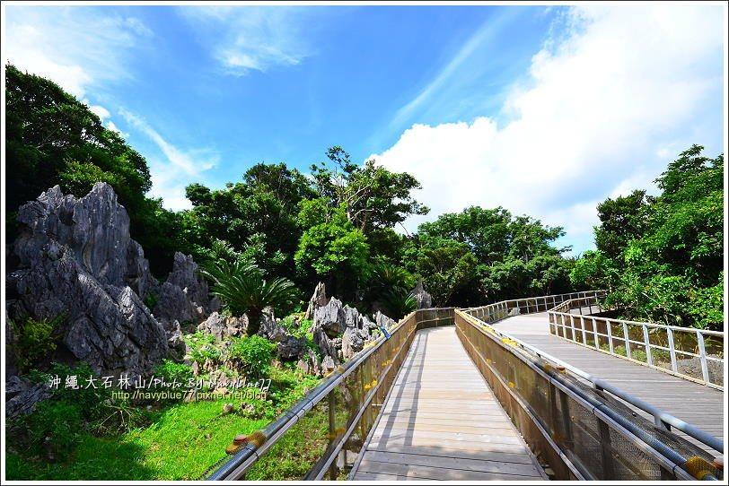 ↑由展望台出發,一路上都是石灰岩地形,加上在岩石上長出的各種老樹,使得一路上都是...