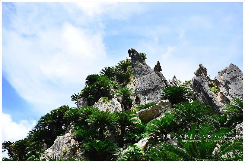 ↑悟空岩上有一顆馬首石。