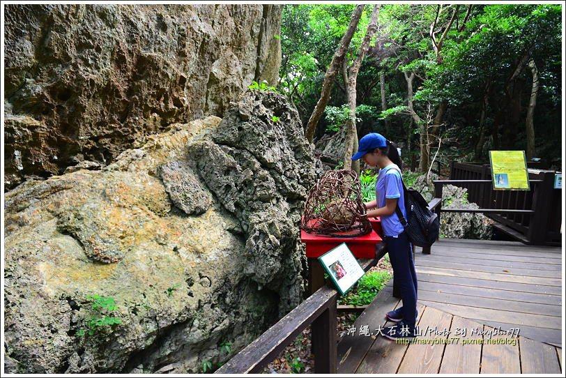 ↑這是大石林山、或者整個沖繩最有能量的場域--石林之壁,摸一下能量石讓身體充滿能...