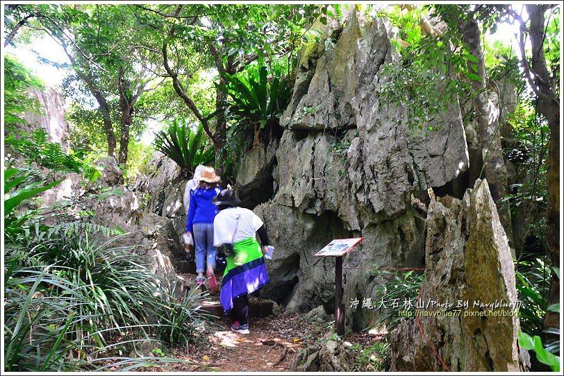 ↑據解說牌上所稱,由這個石洞鑽進繞出三次,可以消災解厄,布魯也跟著鑽三圈。