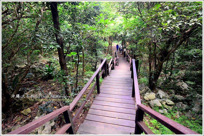 ↑由精氣小屋出發走亞熱帶森林路線算是下坡,但走回來就要上坡了。因此如果不回精氣小...