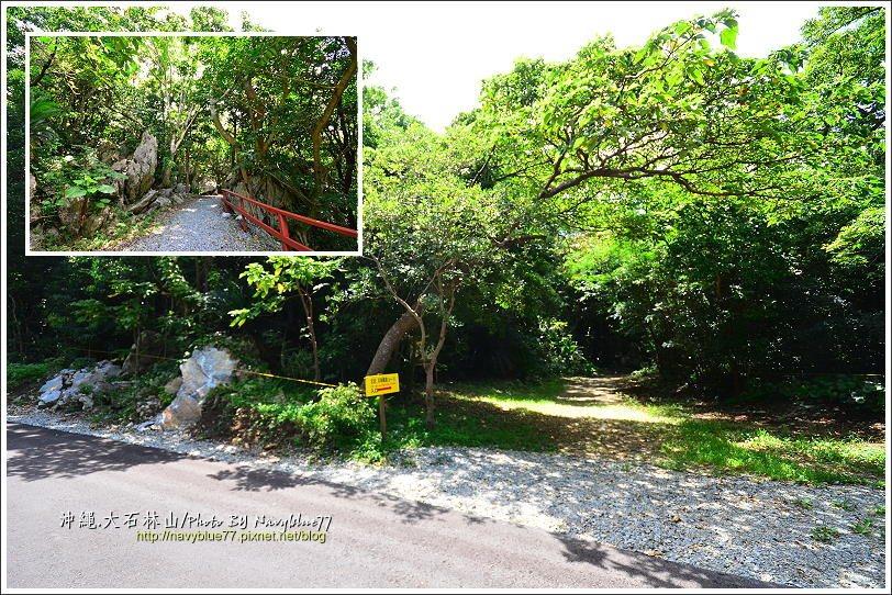 ↑奇石岩林步道的入口,整條步道十分平緩好走。
