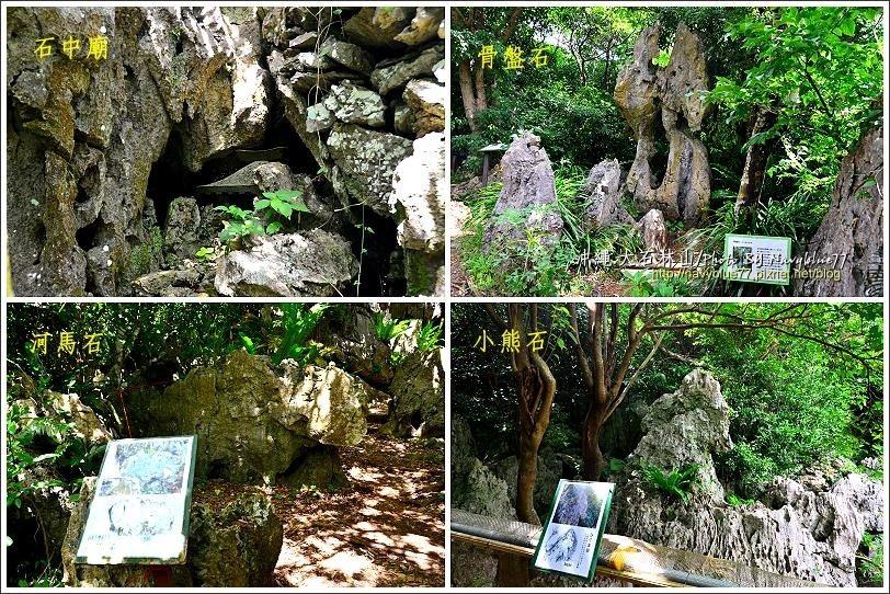 ↑大石林山的石灰岩經過長年沖蝕,造就許許多多奇石,布魯只聊舉其中幾顆。而大石林山...