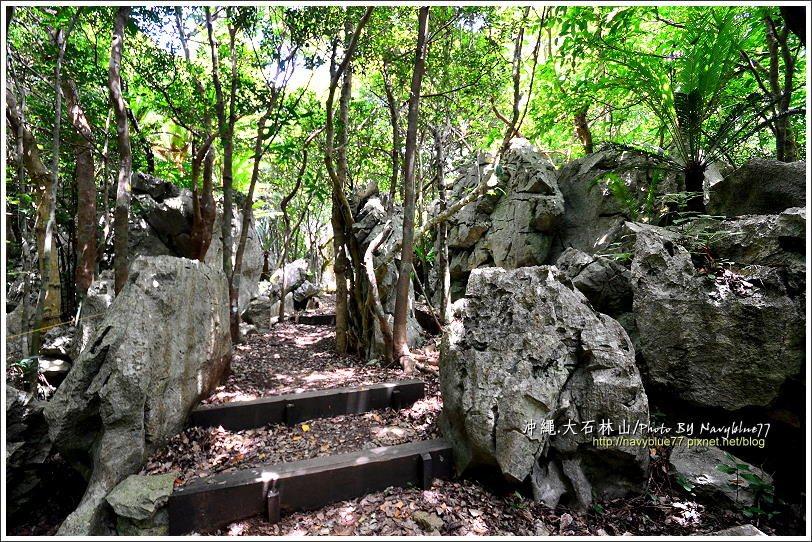 ↑奇岩石林步道經常穿梭在石陣之中。