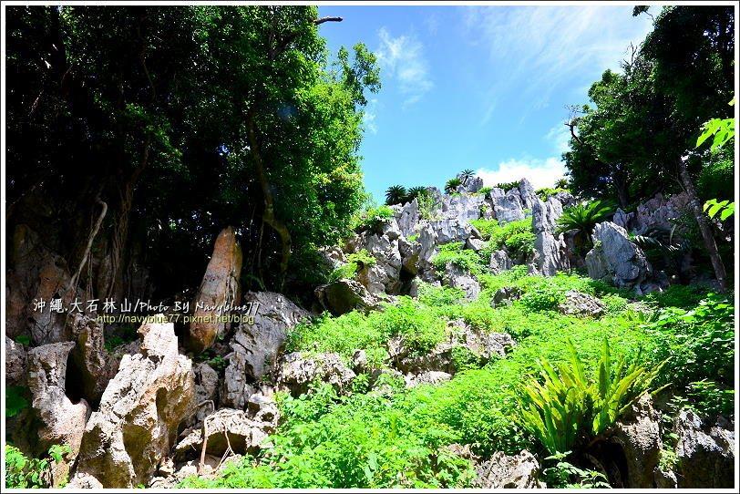 ↑步道中氣勢最強的,就屬這個石林景觀,難怪要稱為石林奇岩步道了。