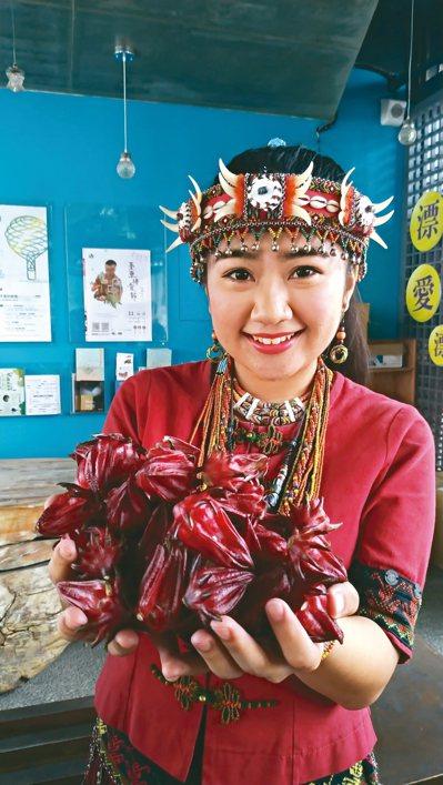 台東金峰鄉洛神花季起跑,鄉公所11月的每周六都安排活動。 記者潘俊偉/攝影