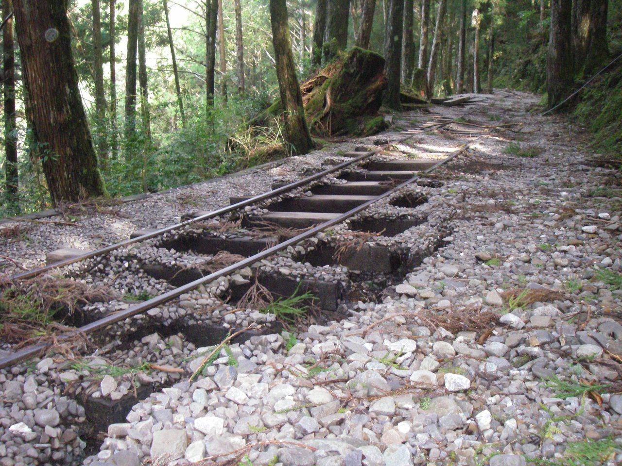 太平山蹦蹦車軌道因颱風導致路基坍塌,單線軌道又增添修復難度。圖/羅東林管處提供